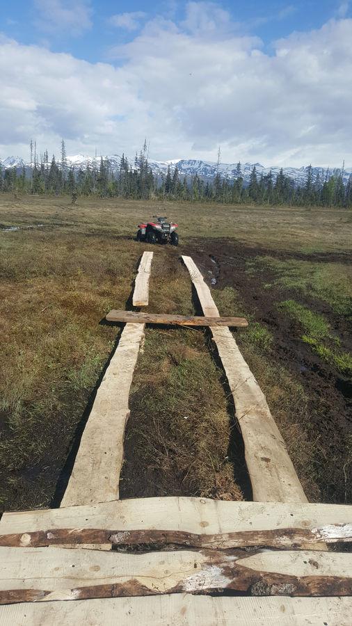Photo of Alaskan Boardwalks
