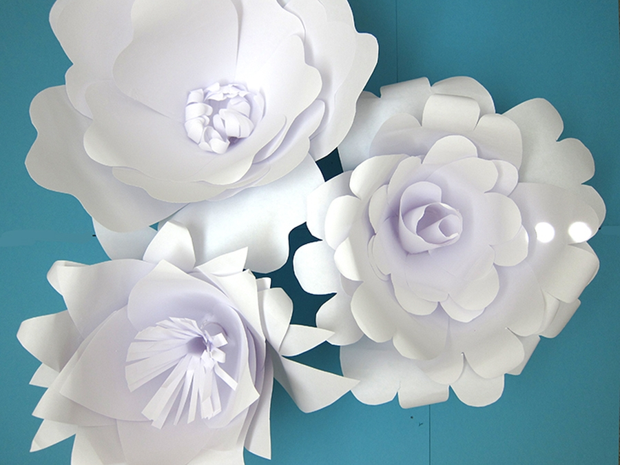 Photo of Paper Flower Backdrop