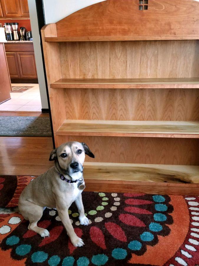 Photo of Craftsman-Esque Bookshelf In Cherry