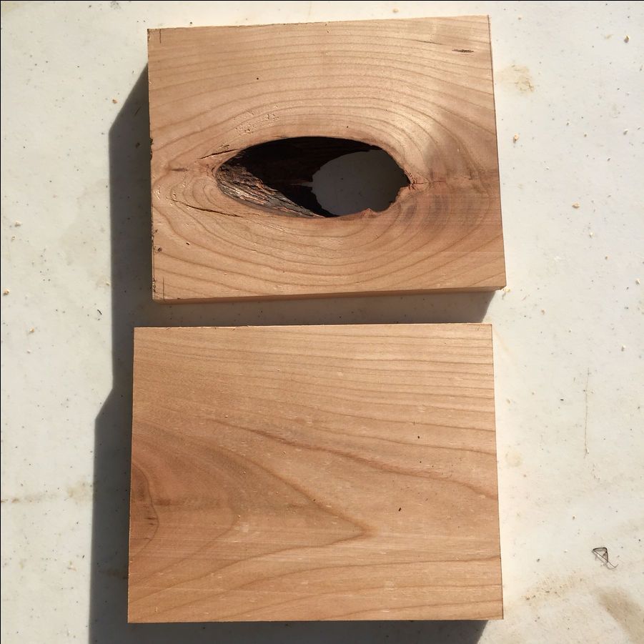 Photo of Iphone Passive Speaker From Scrap Wood