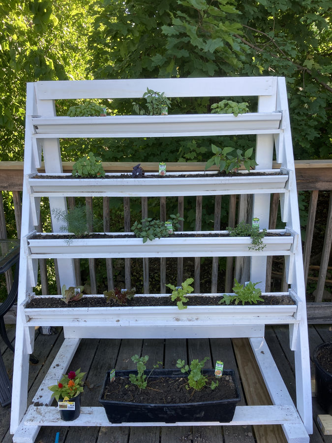 Photo of Mobile Herb Garden