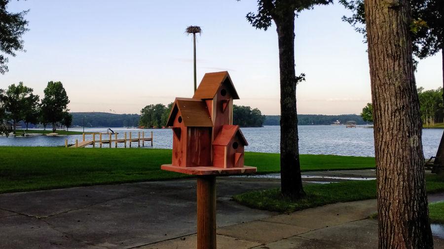 Photo of Bird Condominium