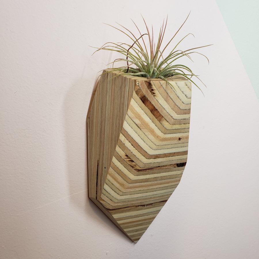 Photo of Geometric Wall Plant Pots
