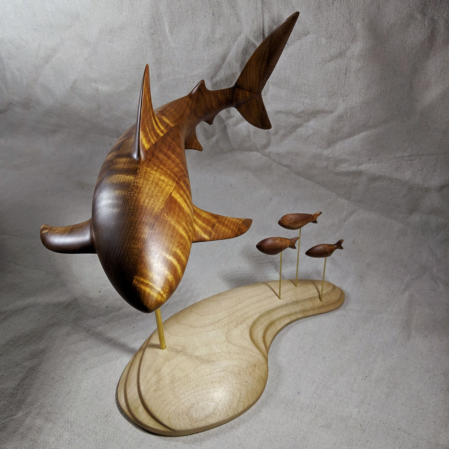 Photo of SHARK! Carving