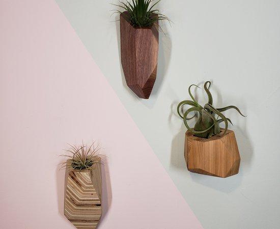 Geometric Wall Plant Pots